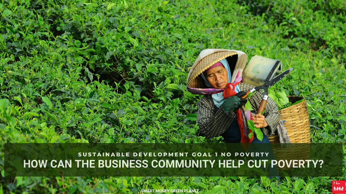 SDG1 How the business community can help cut poverty