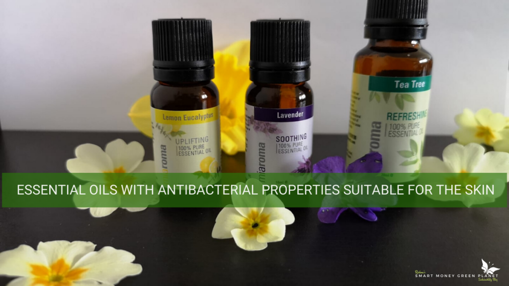 Essential Oils with Antibacterial Properties