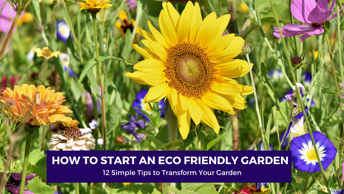 Start an Eco Friendly Garden